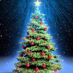 frases de navidad bonitas